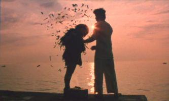 http://www.ekranka.ru/pics/piknikku1.jpg